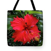 The El Yunque National Forest, Puerto Rico Tote Bag