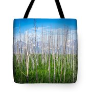 Vast Scenic Montana State Landscapes And Nature Tote Bag