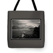 100409-260-bw Tote Bag