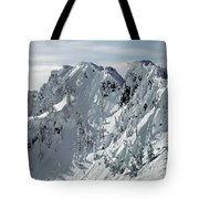 104726 Cornices On Denny Mountain Tote Bag