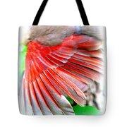 1055-001 - Northern Cardinal Tote Bag