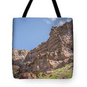 10902 Owyhee River Canyon Tote Bag