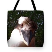 Australia - Kookaburra Looking Right At You Tote Bag