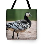 Barnacle Goose Tote Bag