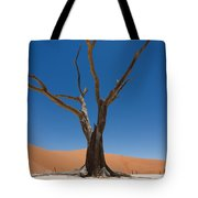 Dead Vlei Tote Bag