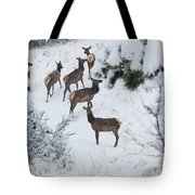 Elk In Deep Snow In The Pike National Forest Tote Bag