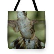 Female Ruby-throated Hummingbird Tote Bag