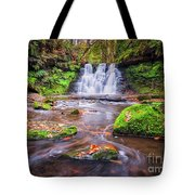 Goit Stock Waterfall Tote Bag
