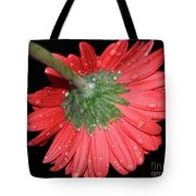 Red Gerber Tote Bag