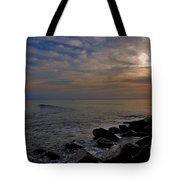 11- Singer Island Tote Bag