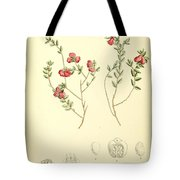 Illustrations Of The Flowering Plants And Ferns Of The Falkland Islands Tote Bag