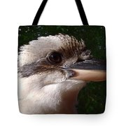 Australia - Kookaburra Poses Tote Bag