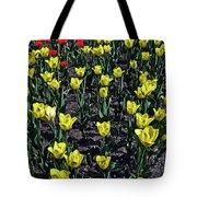 Flower Carpet. Tote Bag