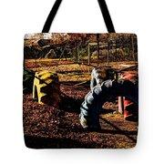 Hocking Hills Tote Bag