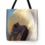Pelican Up Close Tote Bag