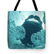 121012-4970 Tote Bag