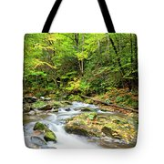 1266 Great Smoky Mountain National Park Tote Bag