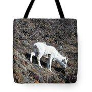 Dahl Sheep, Turnigan Arm Tote Bag