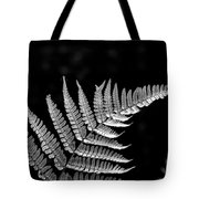 Fern Close-up  Tote Bag