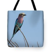 Lilac Breasted Roller On Alert Tote Bag