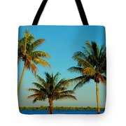 13- Palms In Paradise Tote Bag