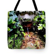 Public Fountain In Palma Majorca Spain Tote Bag