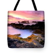Scenery Oil Paintings On Canvas Tote Bag