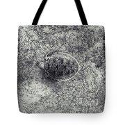 130525-6839 Tote Bag by Enric Gener