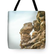 Arches National Park  Moab  Utah  Usa Tote Bag