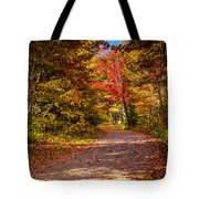 Autumn Season In Killarney Tote Bag