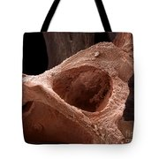 Human Bone, Sem Tote Bag