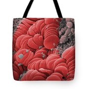 Human Red Blood Cells, Sem Tote Bag
