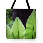 Rainforest At Foxground, Kiama Tote Bag