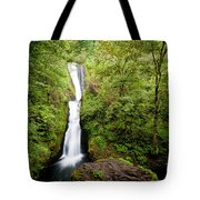 1418 Bridal Veil Falls Tote Bag