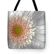 1475-004 Tote Bag