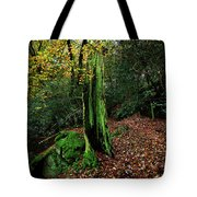 Fontainebleau Forest Tote Bag