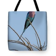 Lilac Breasted Roller 2 Tote Bag