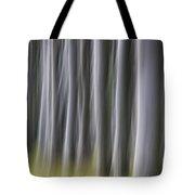 150403p263 Tote Bag