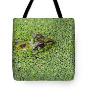 150403p322 Tote Bag