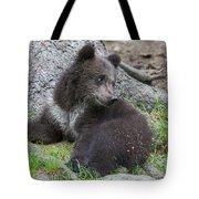 151207p127 Tote Bag