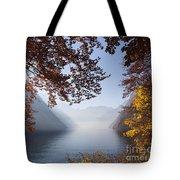 151207p156 Tote Bag