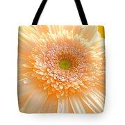 1527-004 Tote Bag