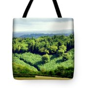 Art Landscapes Tote Bag