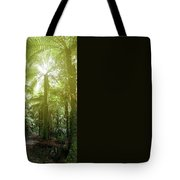 Forest Trail 2 Tote Bag