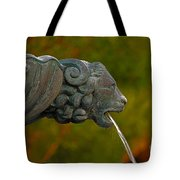 16- Fountain Tote Bag
