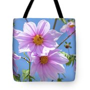 Fully Bloomed Pink Dahlia Imperialis At Garden In November Tote Bag