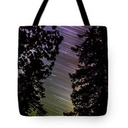 Salt Creek Falls Tote Bag