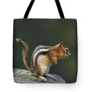Golden-mantled Ground Squirrel Tote Bag