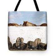 162669 Horse Walls Animals National Geographic Tote Bag