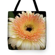 Beautiful Gerber Tote Bag